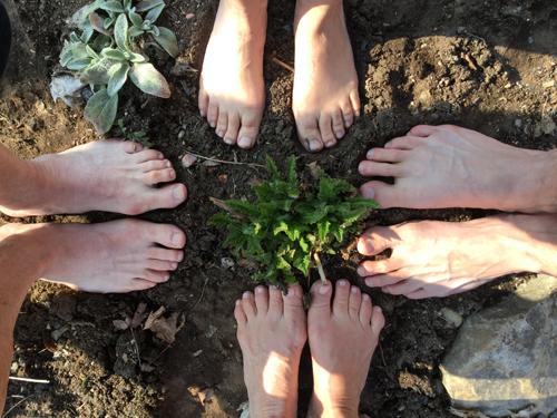 Amitié et collaboration à la Chaumière Fleur Soleil