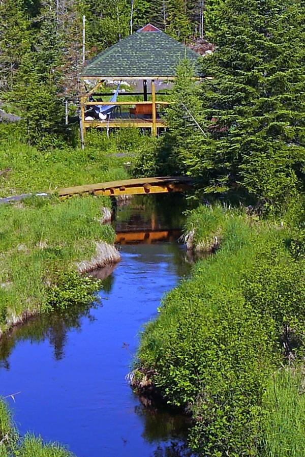 Le Ruisseau de la Chaumière Fleur Soleil