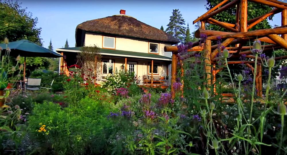 L'abondance des Jardins de la Chaumière Fleur Soleil